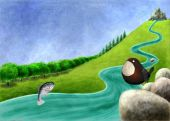 River with salmon and dipper — Stock Photo