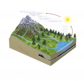 Water cycle — Stock Photo