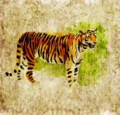 Digital tiger — Stock Photo