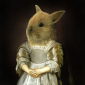 Rabbit renaissance girl — Stock Photo