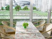 Hydroponic farm and restaurant — Stock Photo
