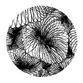 Circle design — Stock Vector