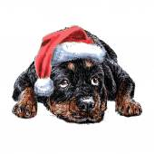 Rottweiler with santa claus hat — Stock Vector