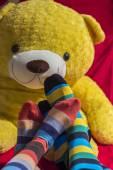 Цветные носки на подростков футов над желтый Мишка — Стоковое фото