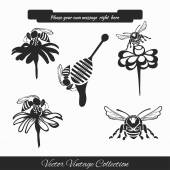 Vector set for honey sketches 1 — Stock Vector