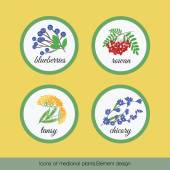 Icons of medicinal plants 1 — Stock Vector