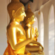 Cloister golden Buddha image arrange in curved wall — Stock Photo #64566185