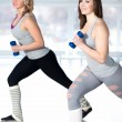 Постер, плакат: Two sporty young women doing aerobics with dumbbells