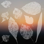Leaf silhouettes collection — Wektor stockowy