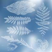 Leaf silhouettes set — Vector de stock