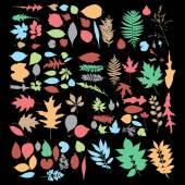 Insieme di foglie d'autunno — Vettoriale Stock