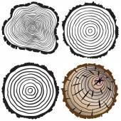 Cut tree trunk — Stock Vector