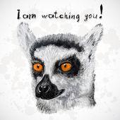 Lemur poster, with orange eyes. — Stock Vector