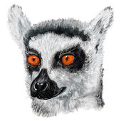 Lemur painted on tablet. — Stock Vector
