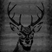 Hand drawn Deer head — Stock Vector
