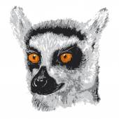 Ring Tailed Lemur — Stockvektor