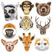 Set of color animals, — Stock Vector