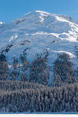 Alpine Alps mountain landscape at St Moritz. Beautiful winter view on sunny day. — Stock Photo