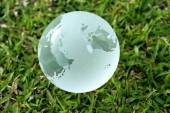 Glass globe in the grass - Environment concept — Stock Photo