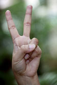 Closeup of hand showing victory sign  — Stock Photo