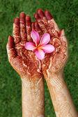 Beautiful plumeria flower in henna hands — Stockfoto