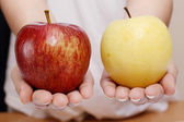 Woman hands holding red and yellow apple — Stock Photo
