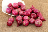 Red onions spilled out from white bowl — Stock Photo