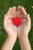 Red heart shape in hands — Stock Photo