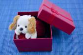 A toy dog in a red present box — Stock Photo