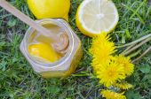 Jar of honey, dipper, lemon and yellow flowers in the grass — Stock Photo