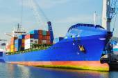 Moored container ship — Stock Photo