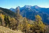 Autumn on the mountains — Stock Photo