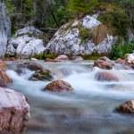 Mountain river in Slovenia — Stock Photo #61382567