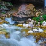 Mountain river in Slovenia — Stock Photo #61389201