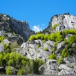 Val di Mello — Stock Photo #61437259