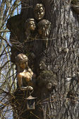 Figure forest maidens on the old oak Ostrog park. — Stock Photo