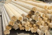 The logs for the construction of a wooden house. — Stockfoto