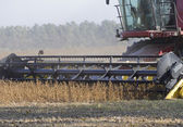 Part harvester closeup during harvest. — Stock Photo