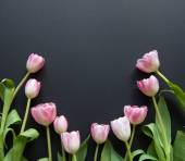 Tulips on a black background — Stock Photo