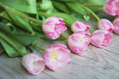 Tulips on a wooden background — Stock Photo