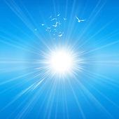 Radiant sunshine — Stock Photo