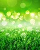 Fresh green sensation — Stock Photo