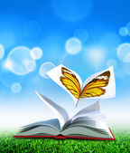 Butterfly book — Stock Photo