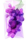 Triangulated Purple Grape — Stock Vector