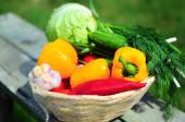 Овощи в корзинке — Stock Photo