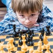Chess — Stock Photo #62461743