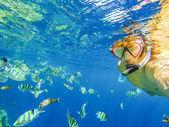Красное море — Стоковое фото