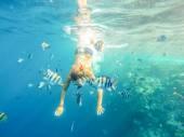 紅海 — ストック写真