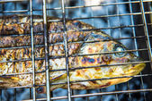 Fish preparing on the grill — Stock Photo