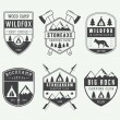 Set of vintage camping labels, badges and logos — Stock Vector #73937685